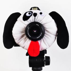 自由気ままな子供をカメラ目線にさせる方法とは?