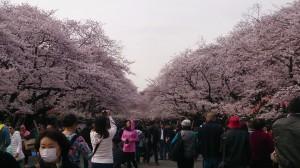 春休み日記