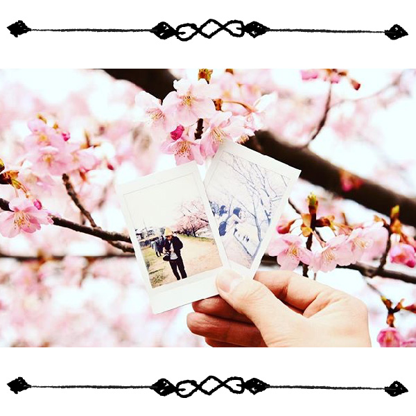 【特集】編集部がみつけた♪春らんまんサクラフォト