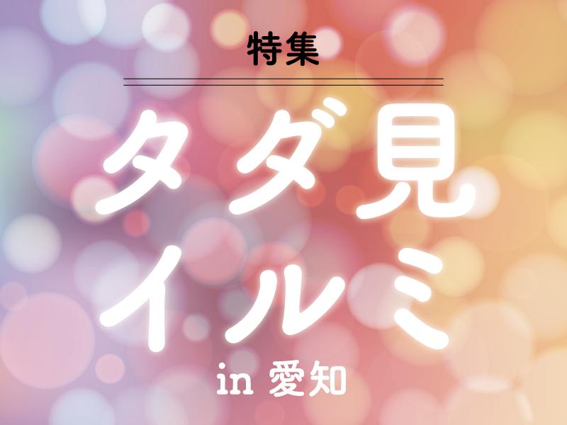 【特集】タダで楽しむ愛知のイルミネーション