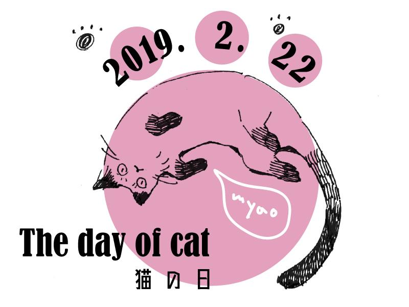 【特集】2/22・猫の日〜猫ともっと仲良くなるには?〜